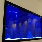 Wall insert designer aquarium