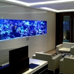 Large Marine Reef Bespoke Aquarium 210