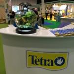 Tetra displays 001