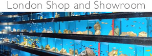 London Aquarium Fish Tank Shop