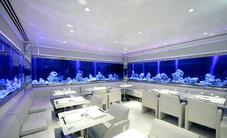 Wall Surrounding Aquariums
