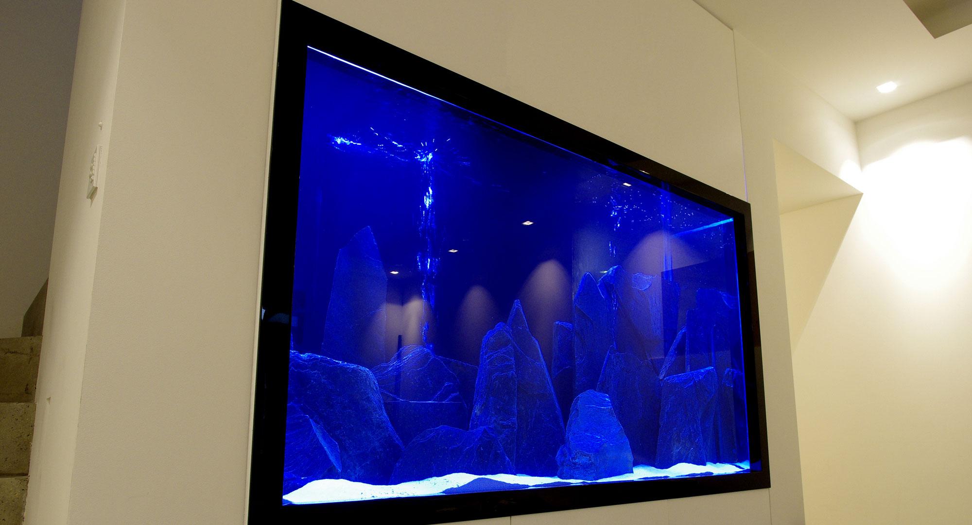 Wall Insert Aquarium