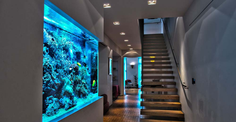 Bespoke luxury Aquariums