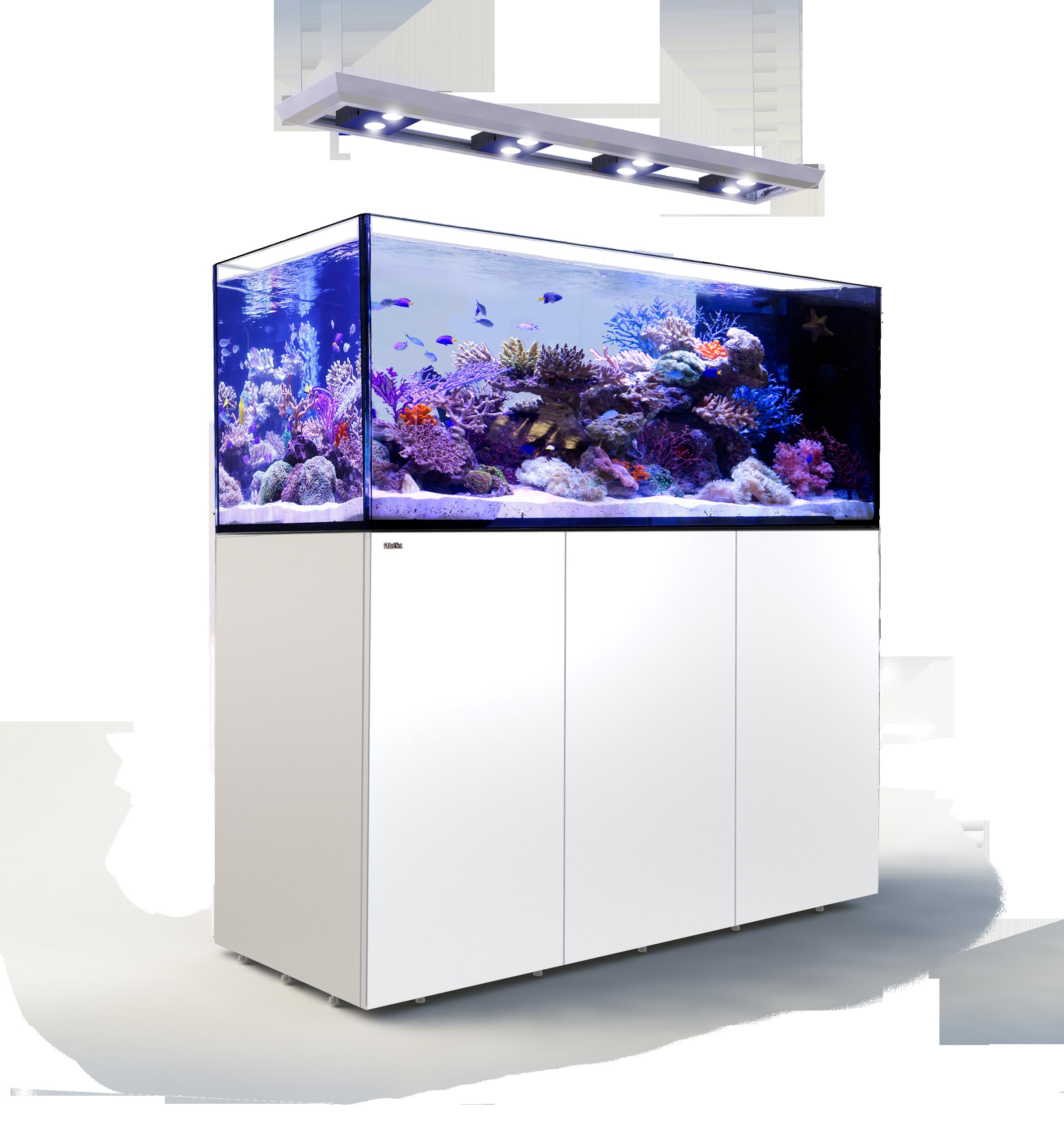 Off the Shelf Aquariums