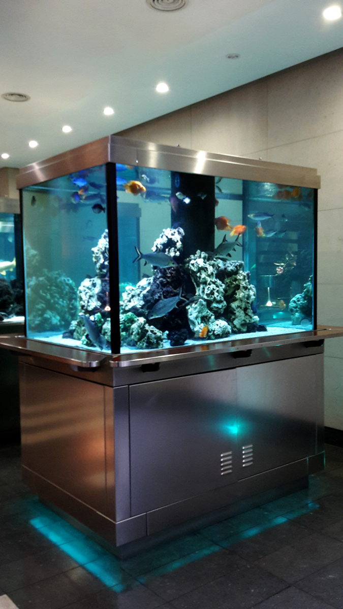 Free Standing Cube Tank