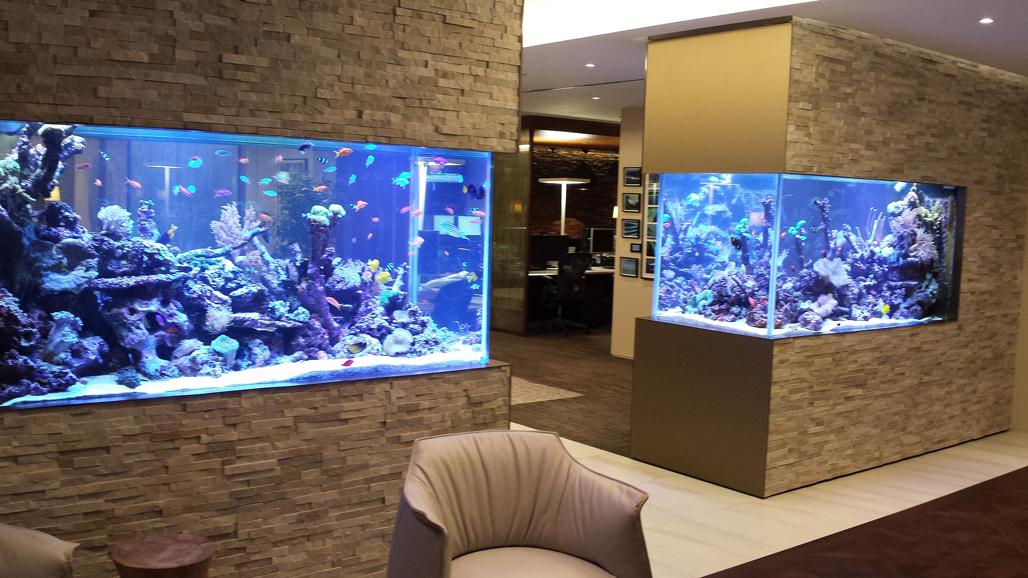 Twin Coral Reef Aquariums