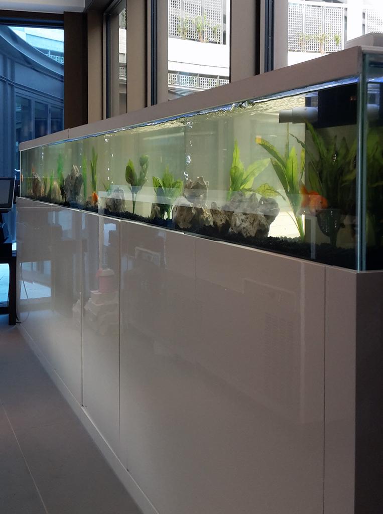 Modern Design Aquarium