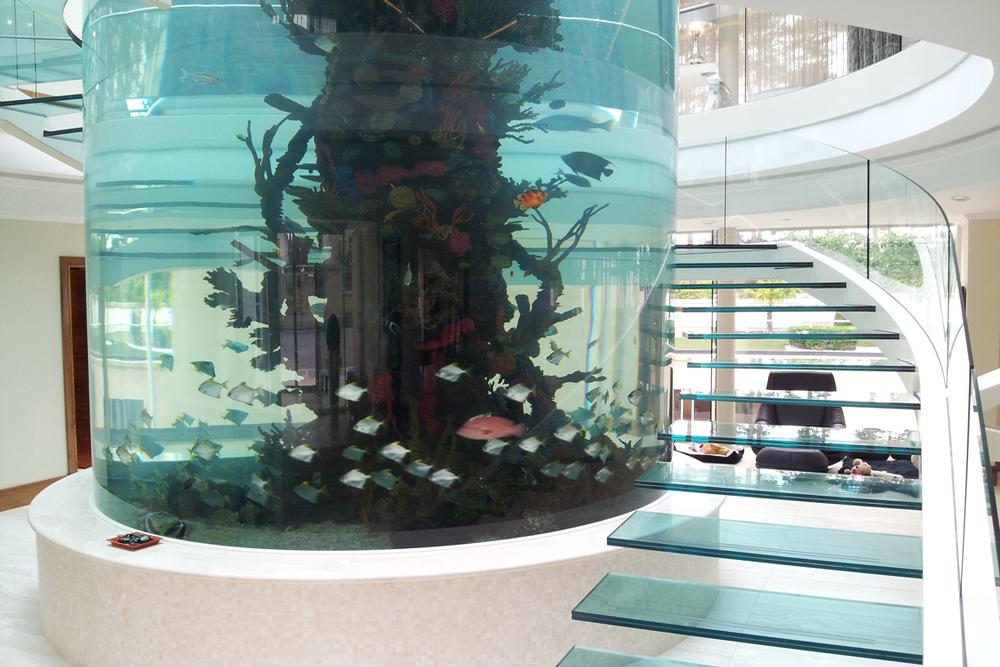 Cyclical Centre Piece Fishtank