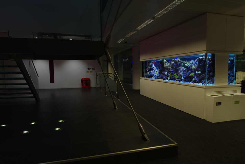 Bespoke Free Standing Aquarium