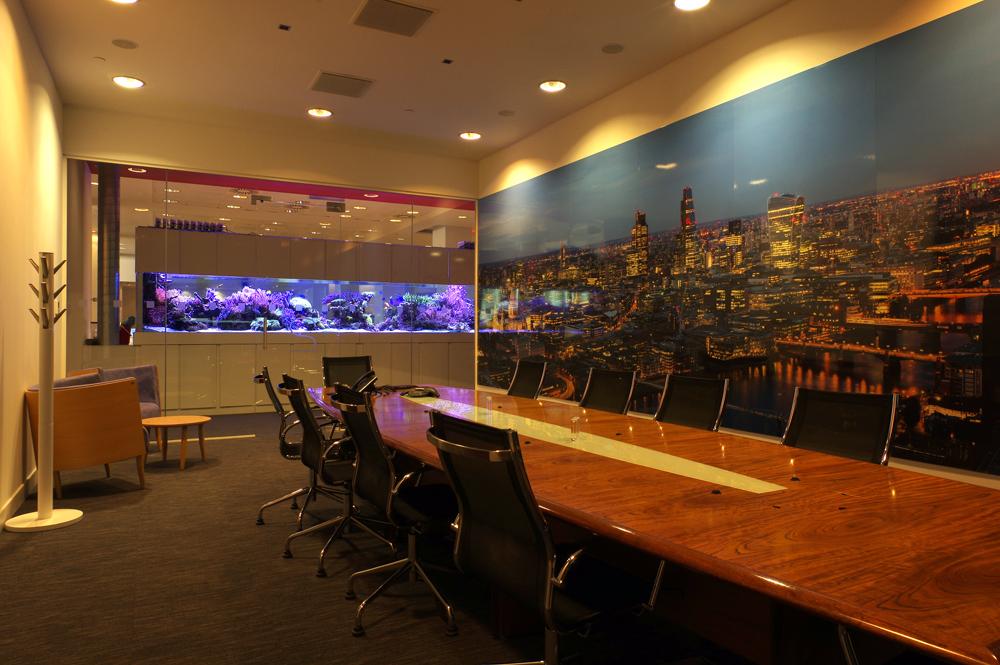 Custom Office Aquarium