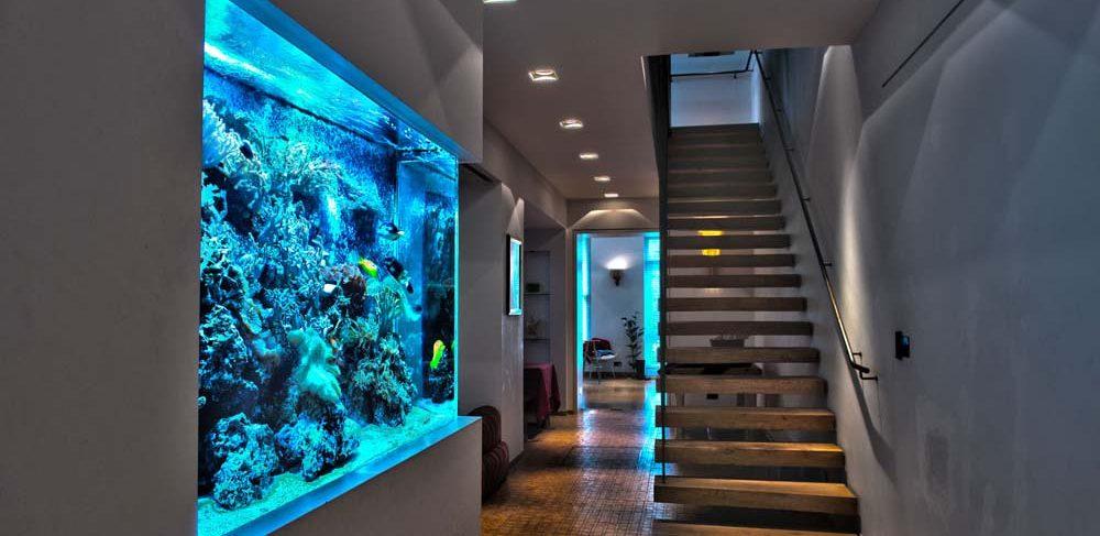 Bespoke luxury Aquariums