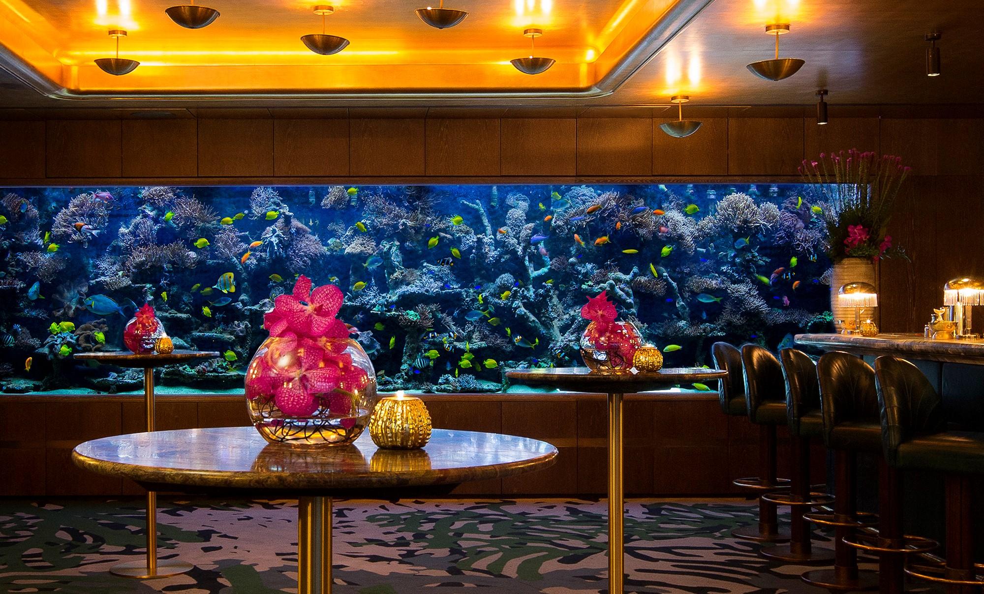 Luxury Designer Aquariums