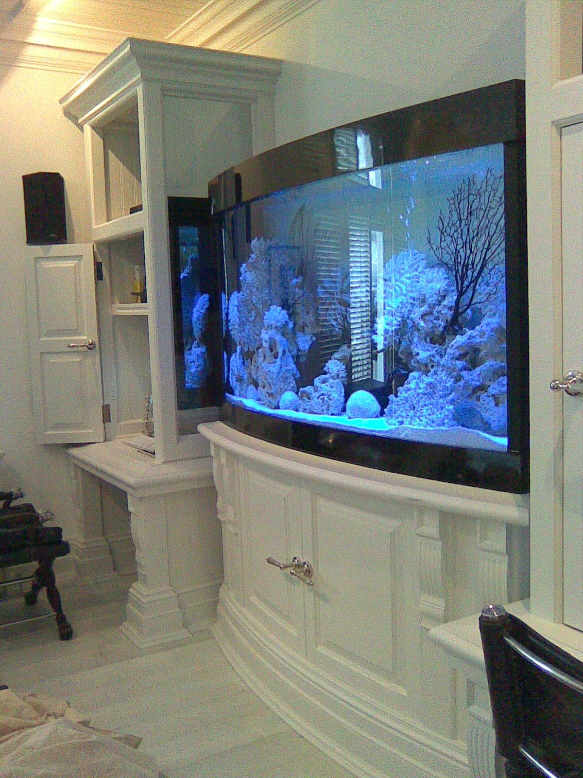 Bow Fronted Aquarium