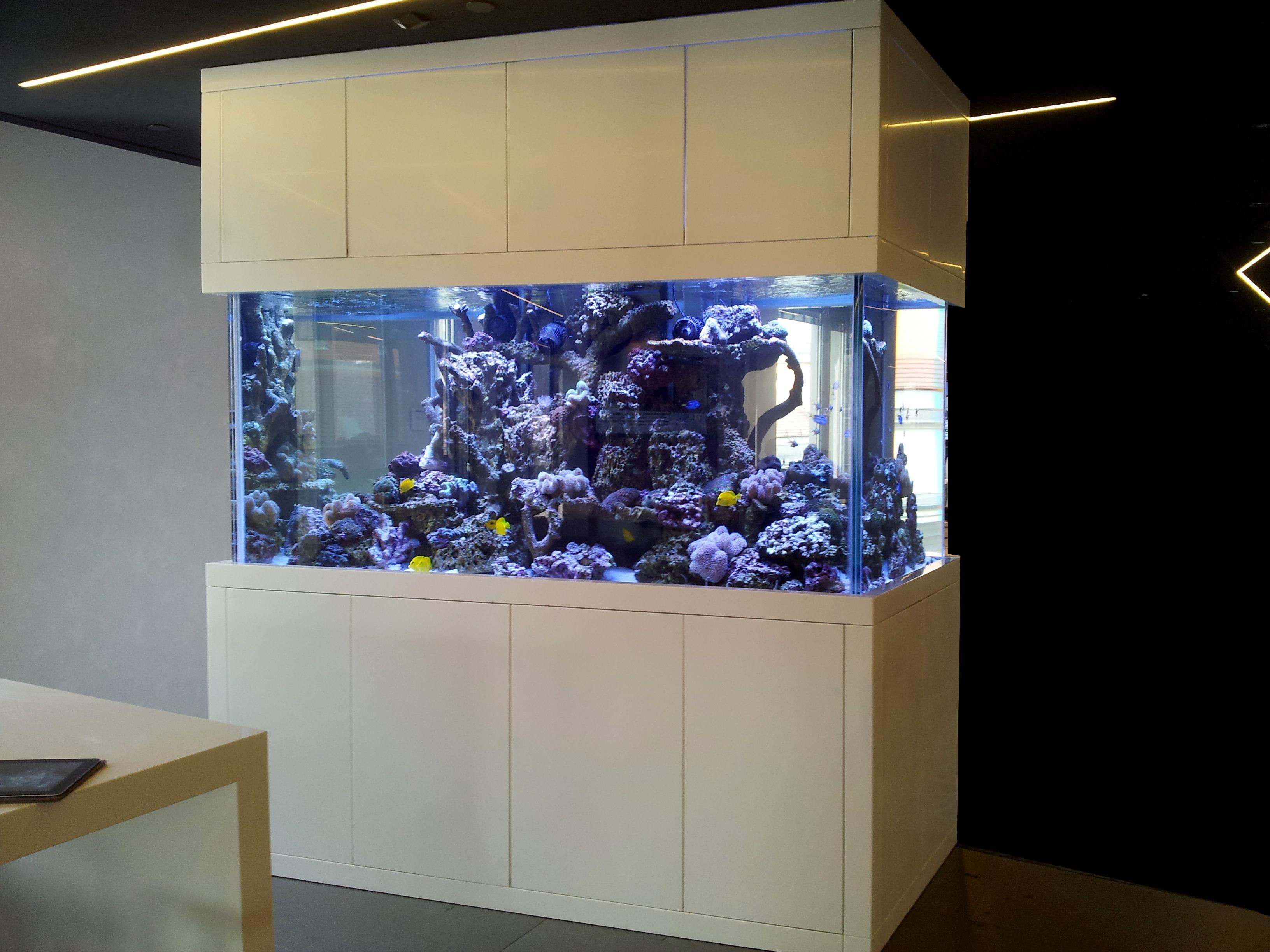 Bespoke Marine Aquarium