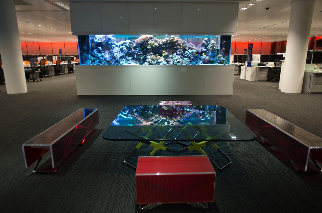 ADC-Aquarium-Design-3982