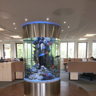 Cylinder Aquarium Office Tank