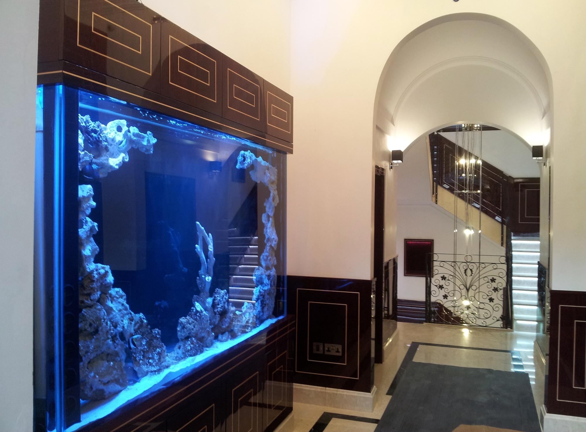 Show-Display-Aquarium